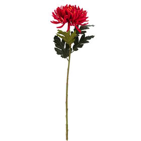 FLORISTA Chrysanthemum, hellrot 63 cm