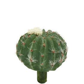 FLORISTA Kaktus, creme, 8cm
