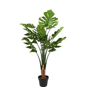 FLORISTA Split-Philo Pflanze 90cm
