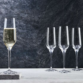GRAPEVINE 6er Set Champagnerflöte 240ml