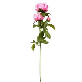 FLORISTA Pfingstrose,pink, 70cm