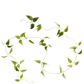 FLORISTA Blättergirlande 180cm