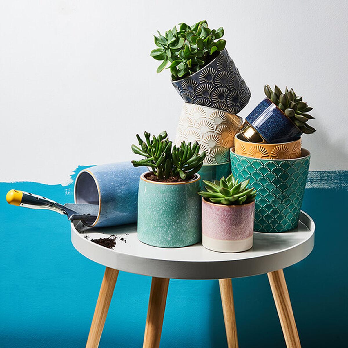 blument pfe pflanzent pfe online kaufen butlers. Black Bedroom Furniture Sets. Home Design Ideas